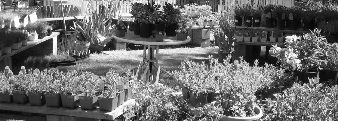 áruleltár egy kis kertészetben